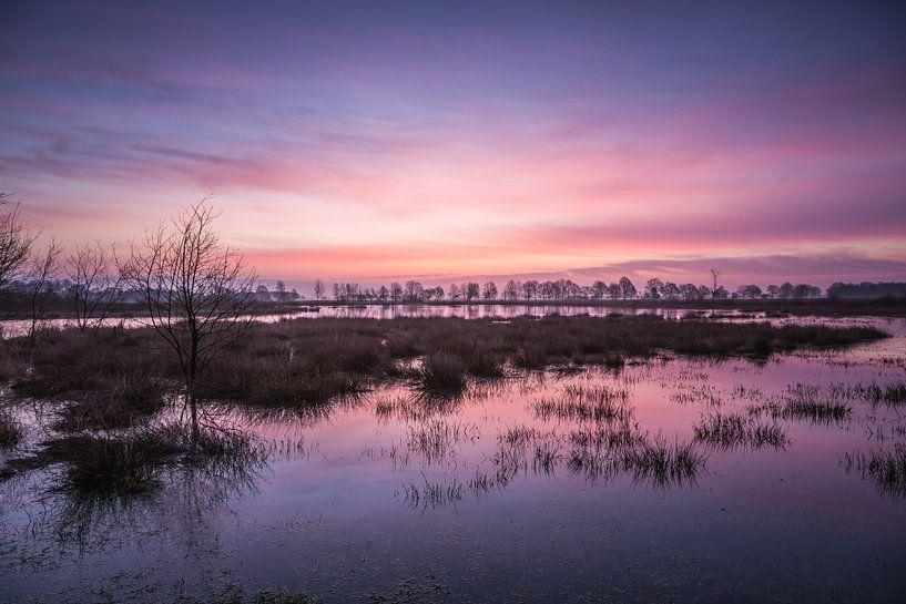 Blauw roze kleurende lucht bij zonsopkomst van Anneke Hooijer