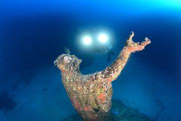 Onderwater Jezus van Jaap Voets