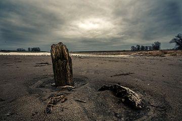 wrakhout van Bert-Jan de Wagenaar