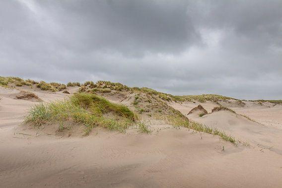 Duinen in de storm