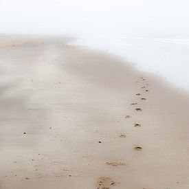 Verschwundene Schritte von Eddy Westdijk