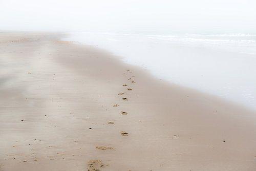 Verdwijnende voetstappen van
