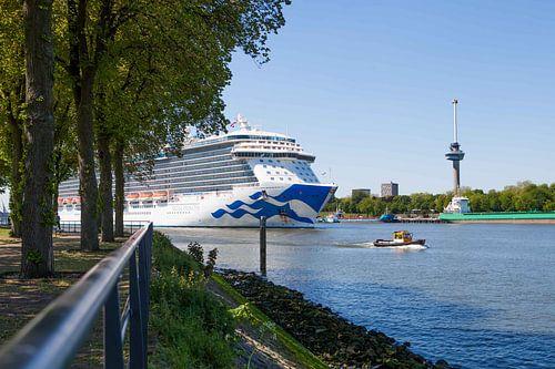 Aankomst cruiseschip in Rotterdam