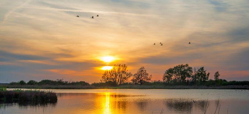 Dutch Golden Sunset van Reint van Wijk