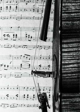 viool in zwart wit van Klaartje Majoor