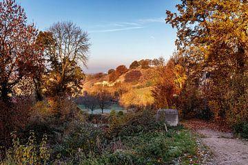 Herfst op de Bemelerberg van Rob Boon
