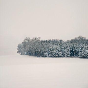 Silence van Lena Weisbek