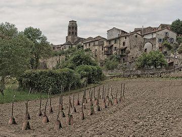 Historisch middeleeuws dorpsaanzicht van Louis Kreuk