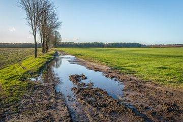 Schlammige niederländische Landstraße mit Wasserpfützen von Ruud Morijn