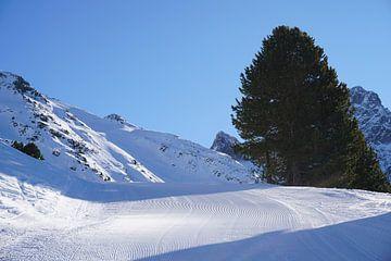 Bluebird! Frisch präparierte Piste im Ötztal/Oetztal in Tirol (Österreich) von Kelly Alblas