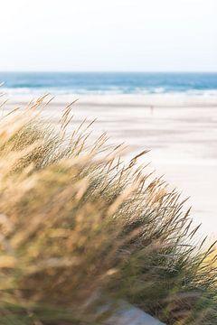 Strand Terschelling van Patrick Verheij