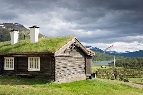 Traditioneel Noors chalet met groen dak