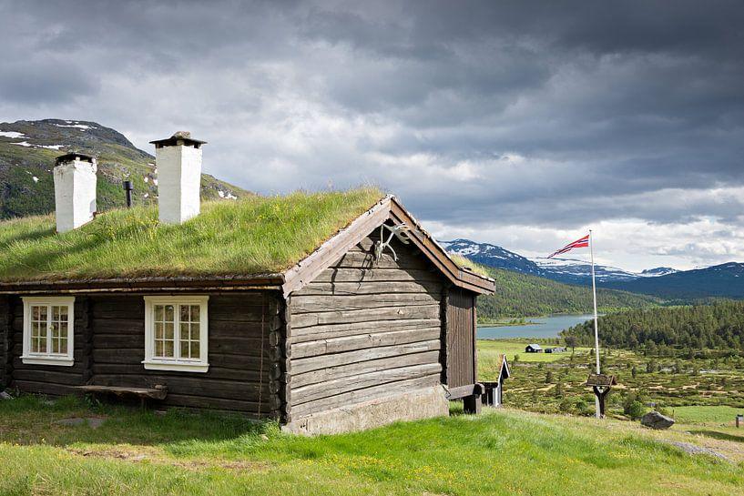 Traditioneel Noors chalet met groen dak van iPics Photography