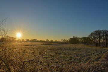 Mooie zonsopkomst boven een open veld
