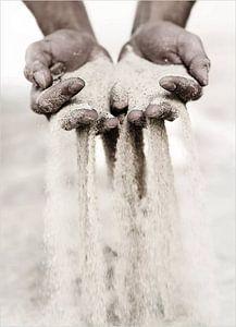 Sandy Hands van David Potter