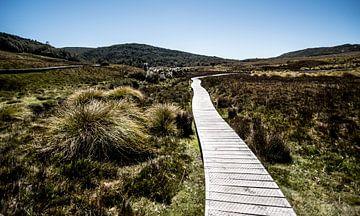 Een pad door de bergen sur