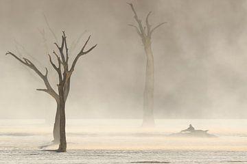 Sandstrom in Deadvlei von Remco Donners