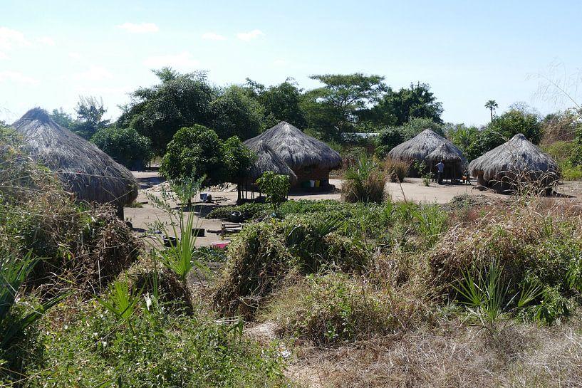 Zambiaans dorp van Peter Polling