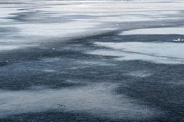 Op vlak ijs van Ellen Middelkoop