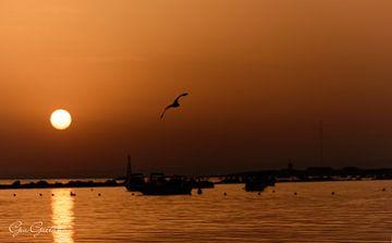 Orange Sonnenuntergang mit der Sonne, die ein Licht über dem Meer aufweckt von Gea Gaetani d'Aragona