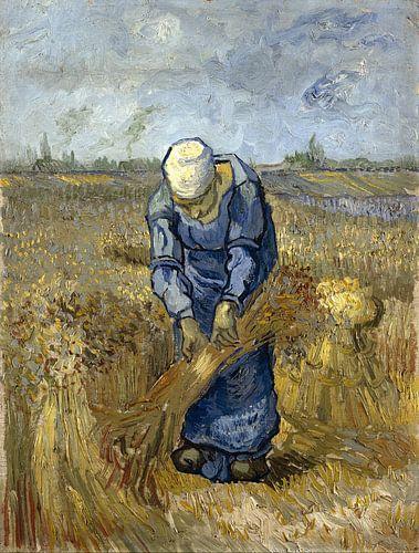 Vincent van Gogh. Boerin bindt schoven