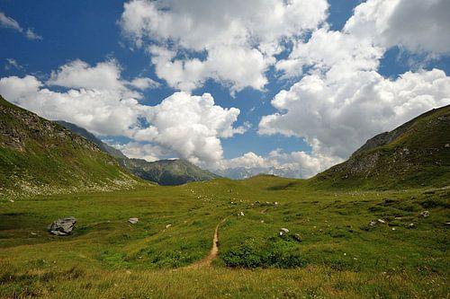 Mooi uitzicht in de Alpen