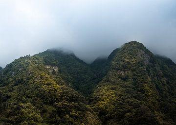 Bergtoppen in de wolken van Madeira van Justin T