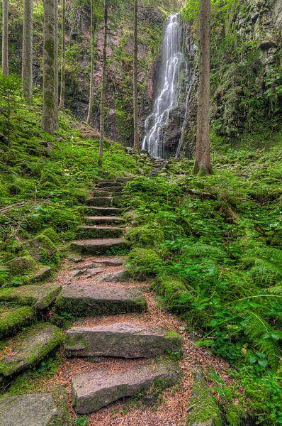 Waterfall in the Black Forest van Michael Valjak