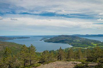 Landschap Zweden van Evelien van der Horst