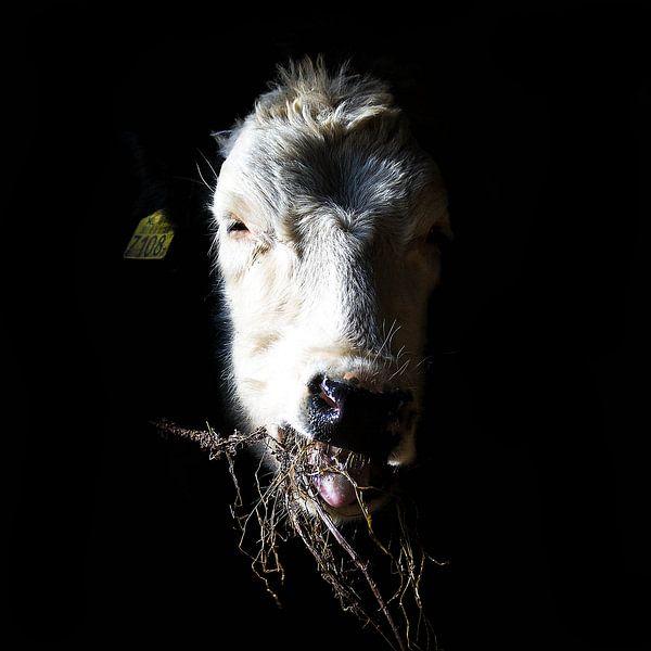 Chew! van Michel Derksen