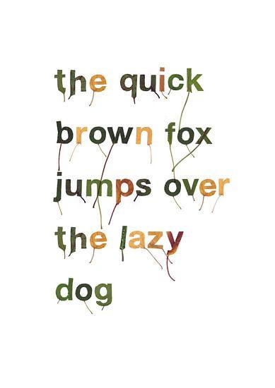 Quick brown fox blad letters van Twan Van Keulen