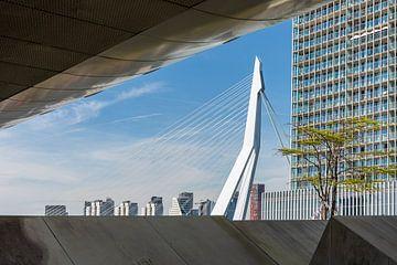Een fantastisch doorkijkje op de Erasmusbrug in Rotterdam van