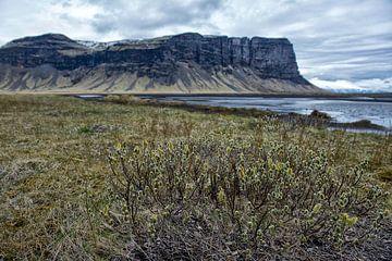Landschap IJsland van Ruud van der Lubben