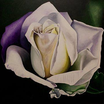 witte roos sur Ria van Meijeren