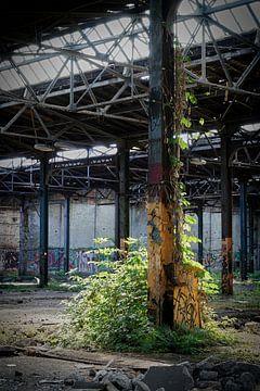 stillgelegte Fabrik am Rande der Stadt Magdeburg von Heiko Kueverling