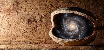Universe in een walnoot