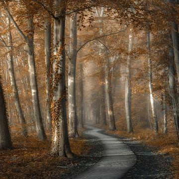 Ein herrlicher Spaziergang von Lars van de Goor