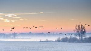 De koude wintermorgen van Mariëlle de Valk
