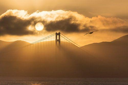 San Francisco's Golden Gate Bridge van Jonathan Vandevoorde
