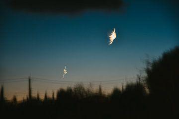 Maan, nieuwe maan in Ibiza nacht van Lisanne Koopmans