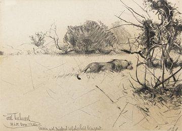 Löwin, sich drückend in Sicherheit bringend, WILHELM KUHNERT, 1905