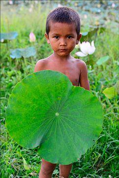 Lotus bloem blad en jongen in het veld-Cambodia van