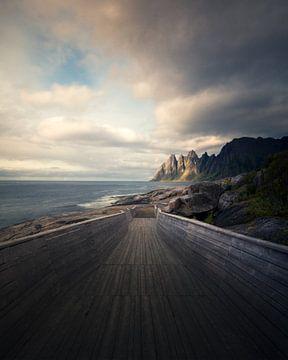 Eine norwegische Landschaft von Niels Tichelaar
