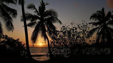 Silhouette Sunset von Timon Schneider