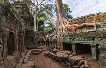 Ta Prohm, Angkor, Kambodscha von Henk Meijer Photography