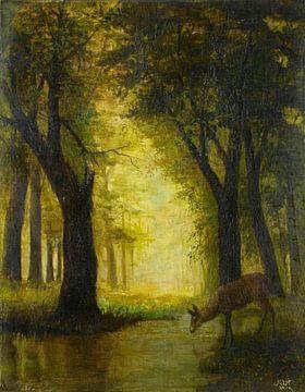 Reh im Wald, Ahmet Ali