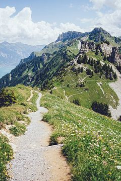 Schynigge Platte Trail von Patrycja Polechonska