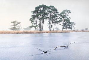Crack in the ice van René Vierhuis
