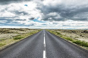 Rondweg IJsland door lavavelden