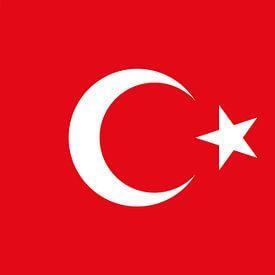 Turkse vlag van De Vlaggenshop